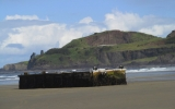 Image of the Day: Tsunami Debris Beached in Oregon