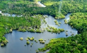 Drying Amazon Could Pose a Carbon Issue
