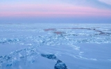 Persistent Warming Driving Big Arctic Changes