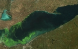 Toledo's Algae Bloom in Line with Climate Projections
