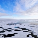 Arctic Sea Ice Is Getting Thinner, Faster: Study